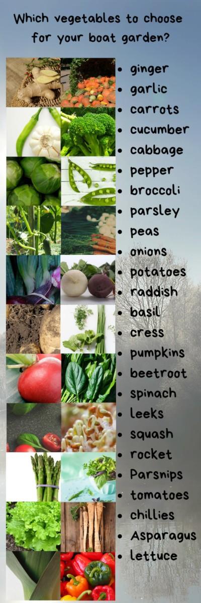 25 vegetables for a boat garden