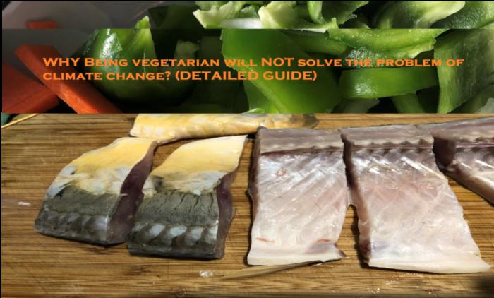 Vegetables & fish