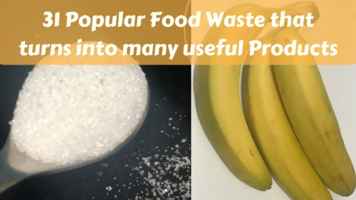 Food Waste that turns into many useful Products