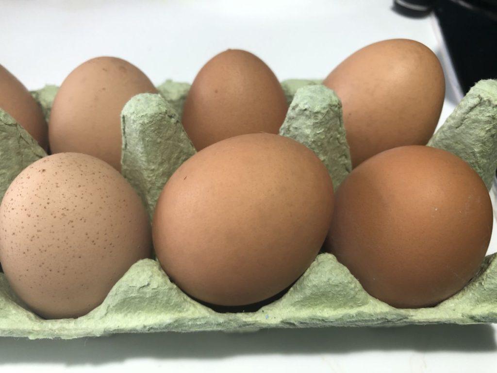 Free range dairy eggs